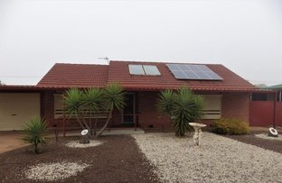 Picture of 119 JENKINS AVENUE, Whyalla Norrie SA 5608