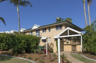 Picture of 2/22-26 Warren Street, St Lucia QLD 4067