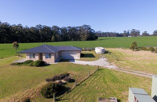 Picture of 31 Nitida Drive, Scotchtown TAS 7330