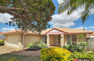 19 Hickory Place, Calamvale QLD 4116