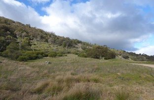 Picture of Lot 3  Foggs Crossing Road, Reids Flat NSW 2586