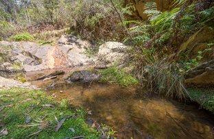 Picture of Shelven Glen 1221 Nowendoc Road, Niangala NSW 2354