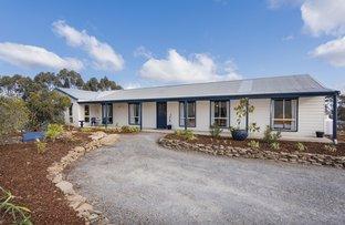Picture of 22 Tara Lane, Murrumbateman NSW 2582
