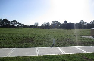 Picture of Lot 8 Mills Road, Warragul VIC 3820