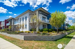 Picture of 100/329 Flemington Road, Franklin ACT 2913