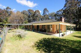 792 Falls Road, Falls Creek NSW 2540