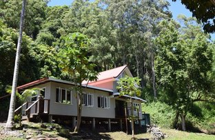 Picture of 348 Bishops Creek Road, Coffee Camp NSW 2480