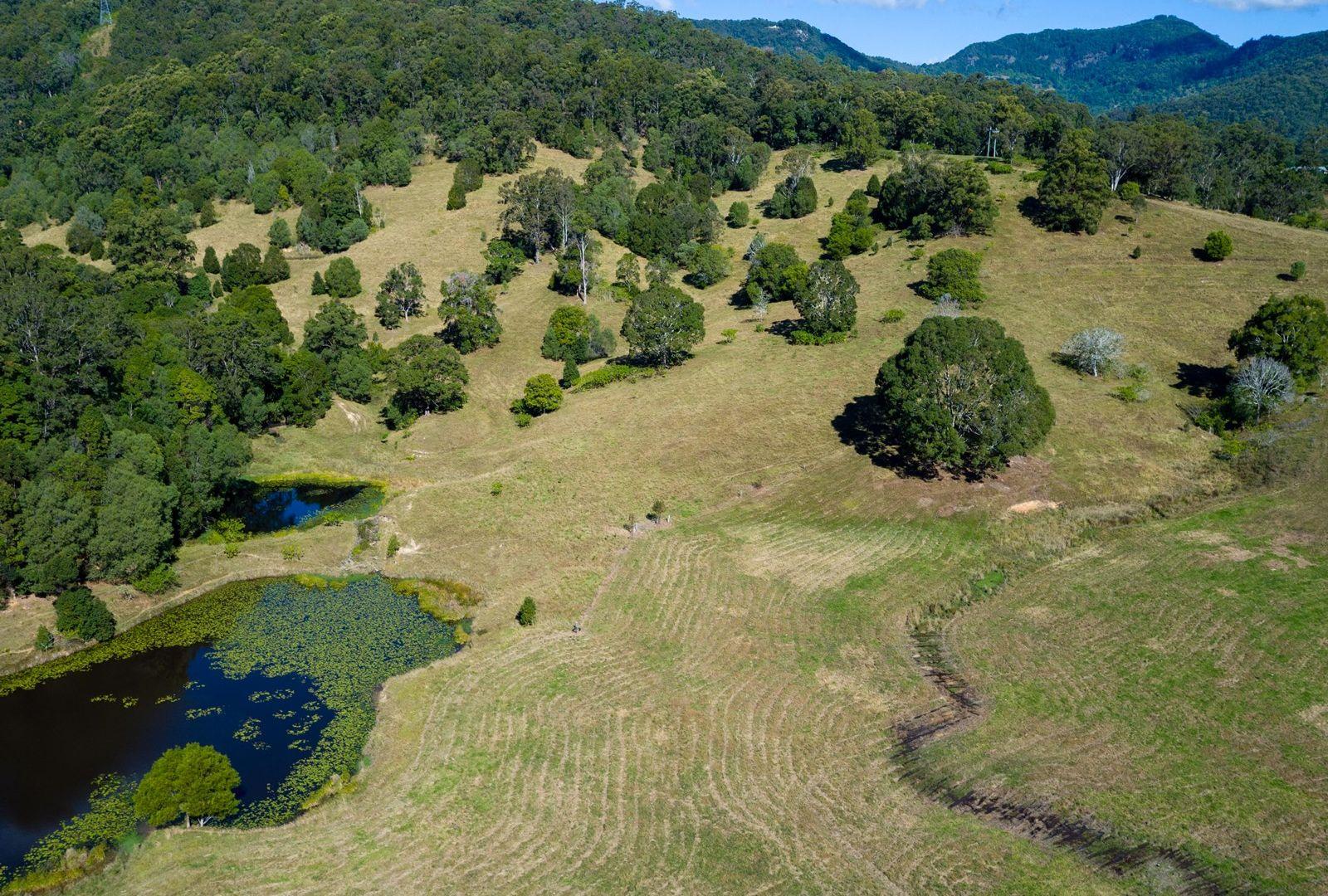 829 Tallebudgera Creek Road, Tallebudgera Valley QLD 4228, Image 2