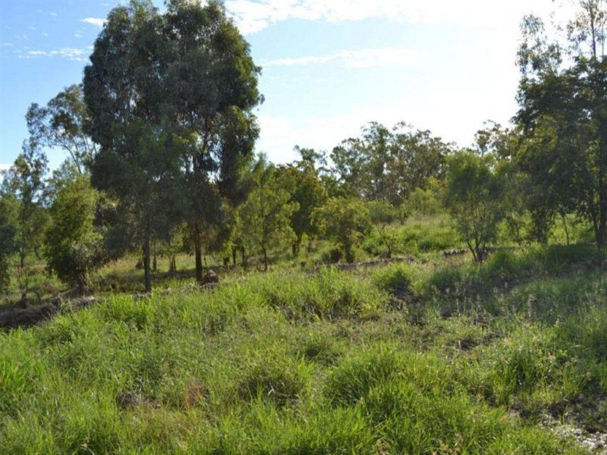 L8 Pheasant Road, Wowan QLD 4702, Image 2
