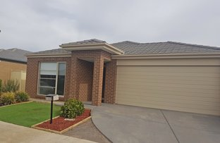 Picture of 14 Noosa Court, Shepparton VIC 3630