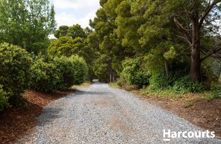 Picture of 4349 West Tamar Highway, Beauty Point TAS 7270