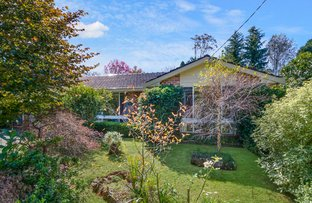 Picture of 13 Beatty Road, Wentworth Falls NSW 2782