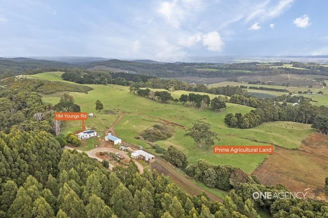 Picture of 184 Youngs Road, IRISHTOWN TAS 7330