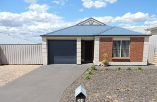 Picture of 34 Waterlily Terrace, Murray Bridge SA 5253