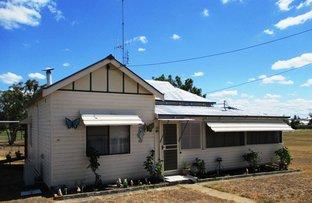 Picture of 17  Bukkulla street, Ashford NSW 2361