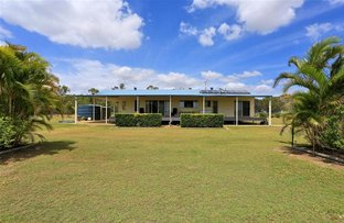 Picture of 93 Rohdmanns Road, South Kolan QLD 4670