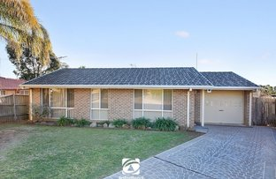 14 Wignell Place, Mount Annan NSW 2567