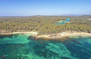 Picture of 8 Smugglers Cove, Lilli Pilli NSW 2536