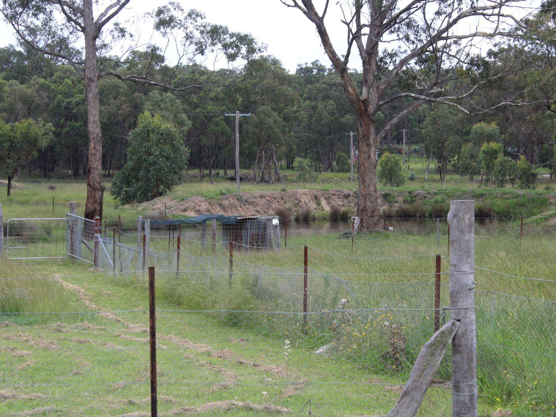 1546 Torrington Road, Stannum, Glen Innes NSW 2370, Image 1