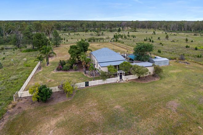 Picture of 'Pinelands' 35857 LEICHHARDT HIGHWAY, GURULMUNDI QLD 4415