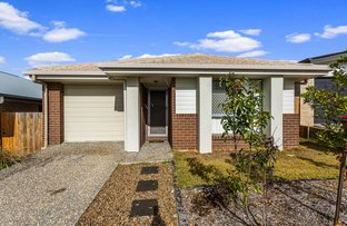 Picture of 5 Gossan Cct, Yarrabilba QLD 4207