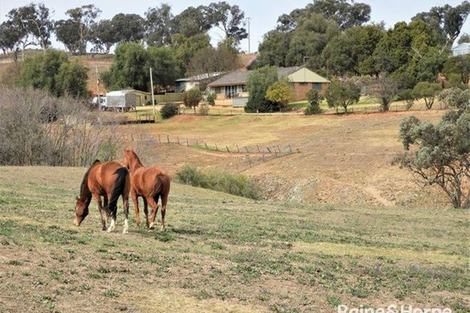 Picture of 1598 GEEGULLALONG ROAD, MURRINGO NSW 2586