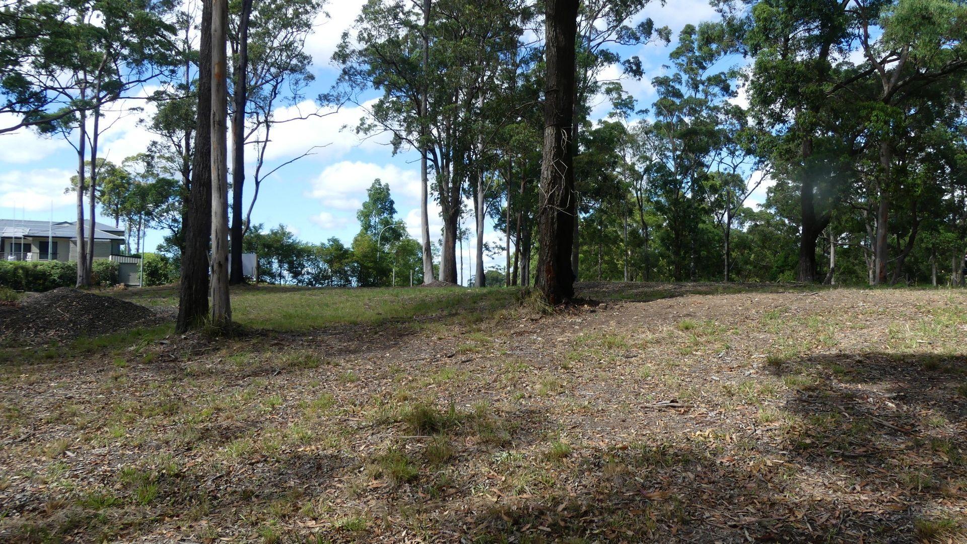 7/131 Tallwoods Drive, Tallwoods Village NSW 2430, Image 1