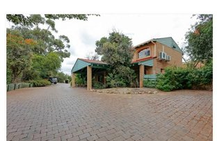 Picture of 1/23 Lawley Crescent, Mount Lawley WA 6050