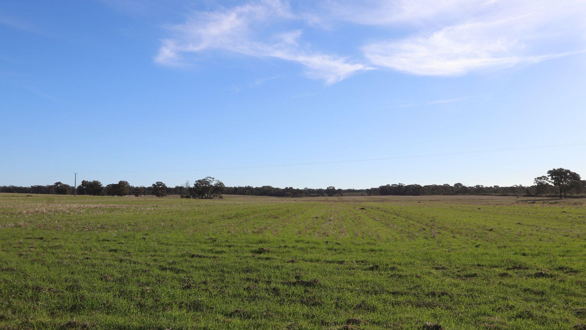 Temora NSW 2666, Image 2