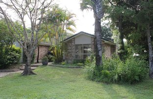 Picture of 346 UPPER CRYSTAL CREEK ROAD, Upper Crystal Creek NSW 2484
