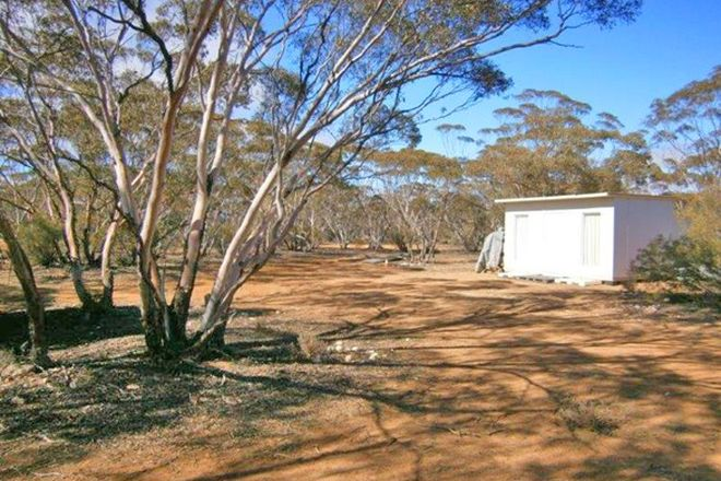 Picture of Lot 91 Sturt Highway, BLANCHETOWN SA 5357