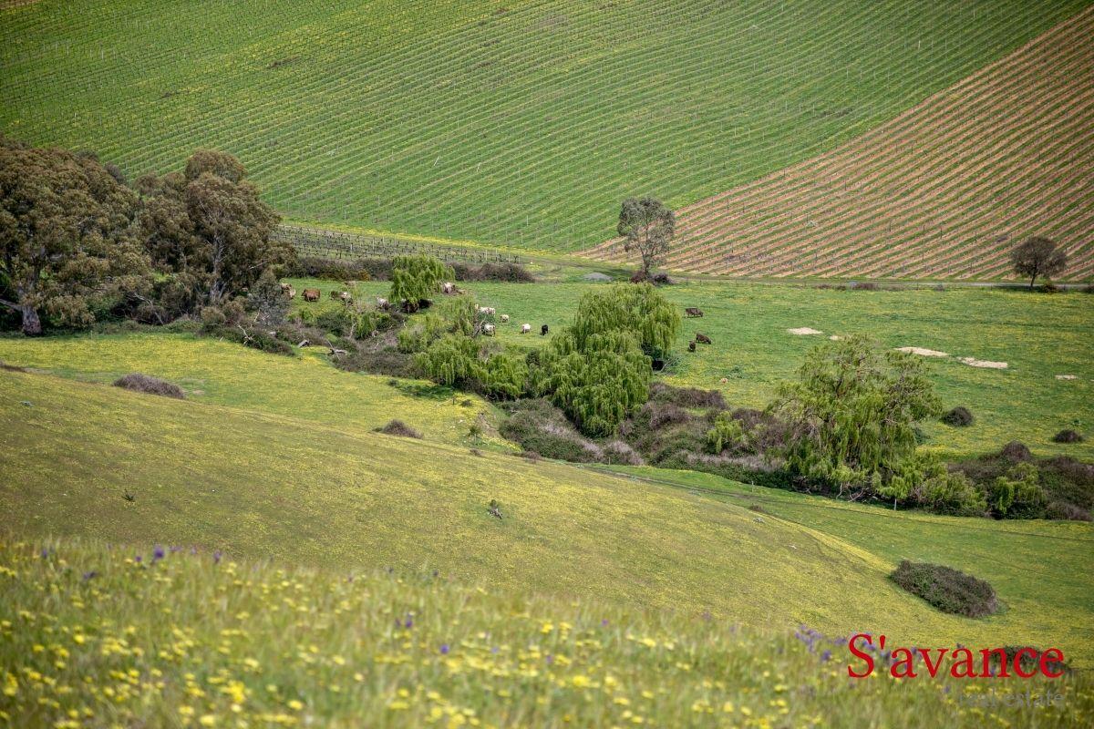 29 Woolshed Road, Kersbrook SA 5231, Image 1