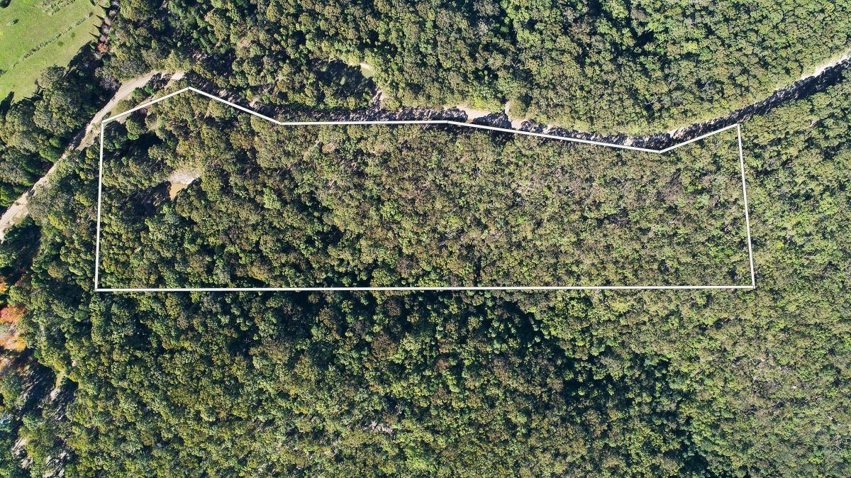 1085 Mountain Lagoon Road, Bilpin NSW 2758, Image 2