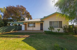Picture of 454 McEdward St, Birdwoodton VIC 3505
