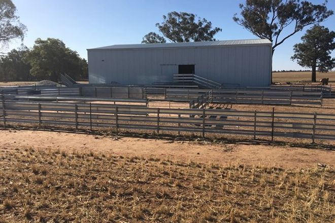 Picture of 1108 Ardlethan Rd COOLAMON VIA, WAGGA WAGGA NSW 2650