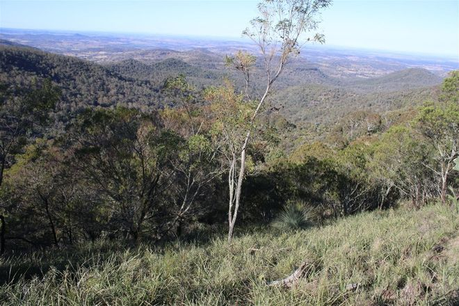 Picture of BUNYA MOUNTAINS QLD 4405