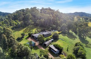 Picture of 848 Eumundi Kenilworth Road, Belli Park QLD 4562