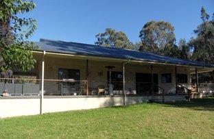 246 Emu Swamp Road, Glen Aplin QLD 4381