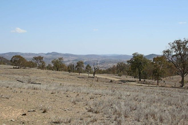 Picture of Mole Station Road, TENTERFIELD NSW 2372