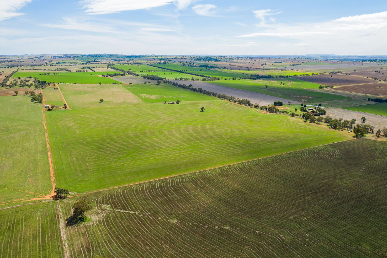 Coursing Park Road, Downside via, Wagga Wagga NSW 2650, Image 1