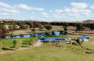 Picture of 151 Wattlegrove Lane, Mudgee NSW 2850