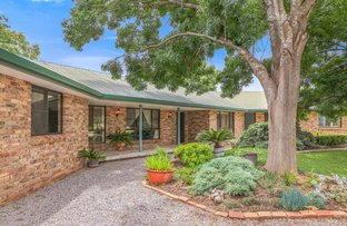 Picture of 97 Whitehouse Lane, Tamworth NSW 2340