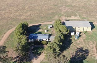 Picture of 'Bonnie Doo' 2686 Mary Gilmore Way, Temora NSW 2666