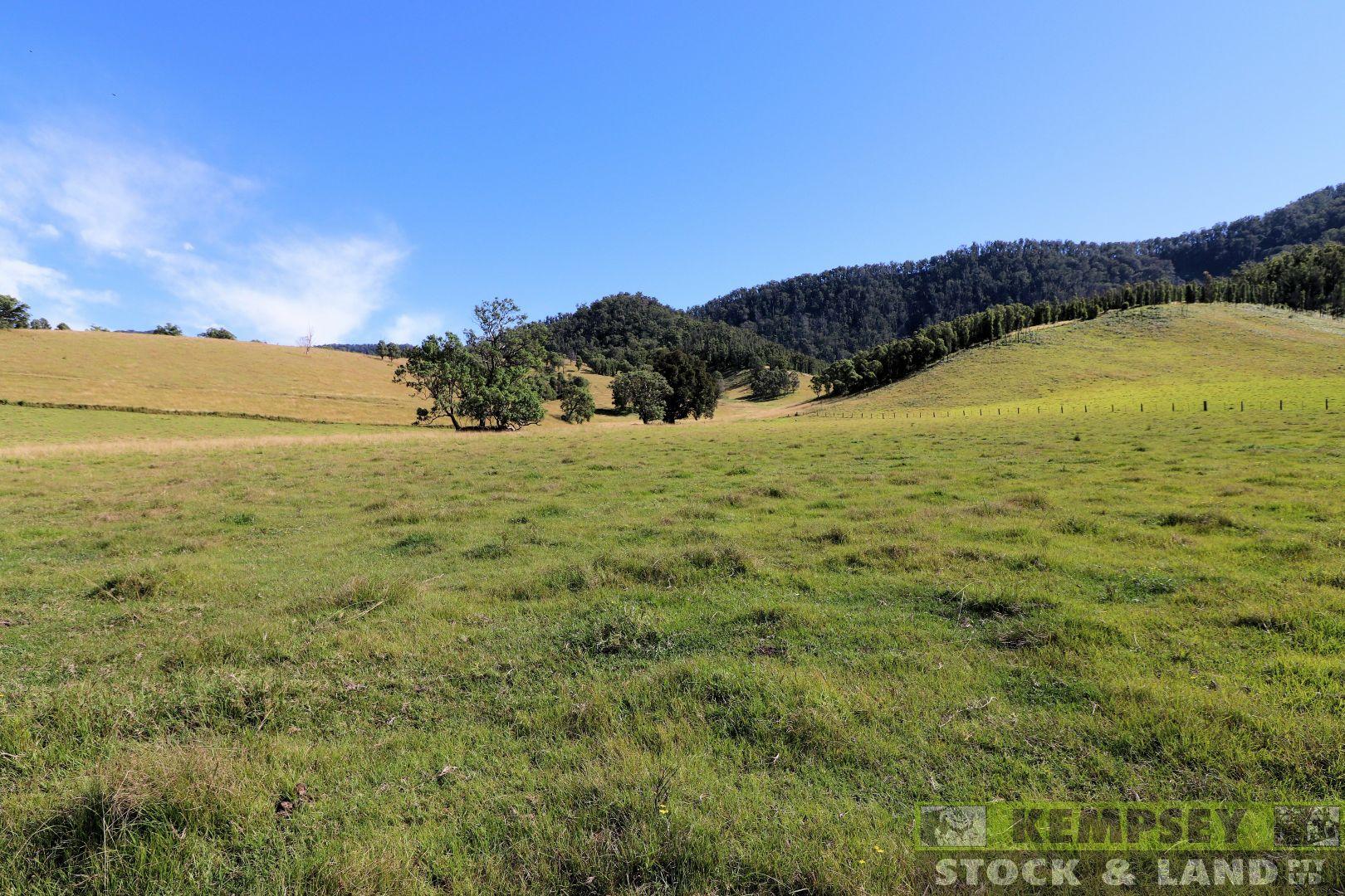 2 Lower Creek Rd, Lower Creek NSW 2440, Image 1