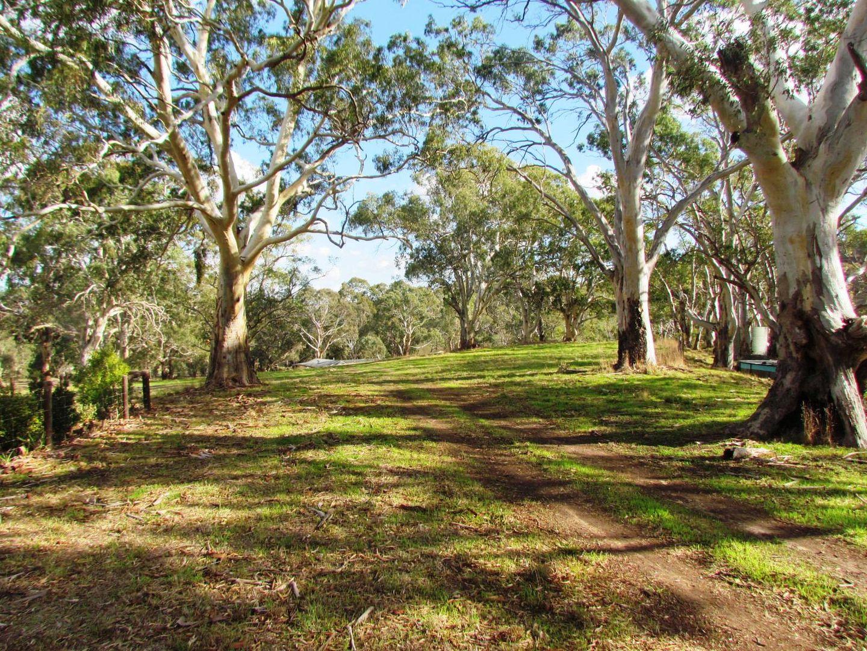 Lot 52 Henry Martin Road, Ashbourne SA 5157, Image 2