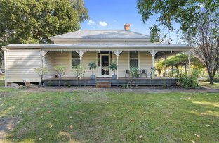 Picture of 187 Roach Rd, Warrenbayne VIC 3670