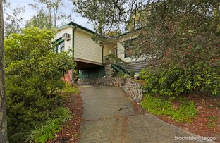 Picture of 10 Newton Street, Ferntree Gully VIC 3156