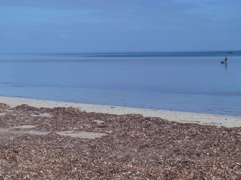 128 The Esplanade, Thompson Beach SA 5501, Image 2