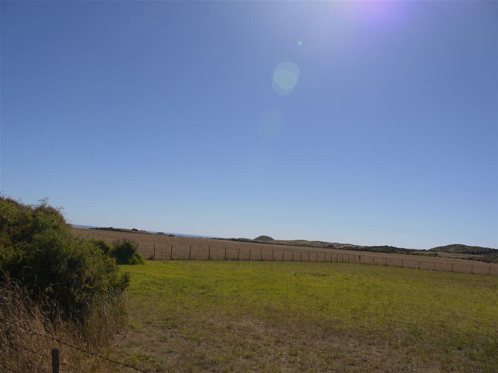 879 North Road, Loorana, Currie TAS 7256, Image 1