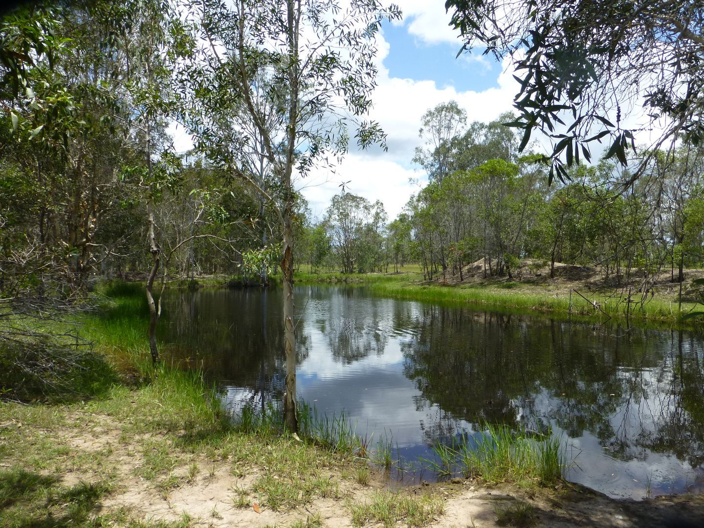 27369 BRUCE HIGHWAY, Isis River QLD 4660, Image 2